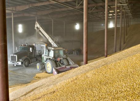 Ток для зерна – решение для полевых условий